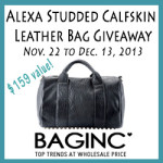 Enter : Alexa Studded Calfskin Leather Bag Giveaway ($159 value)