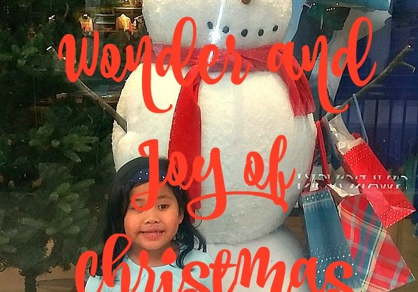 Believe the Wonder and Joy of Christmas